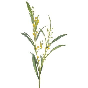 Yellow Mimosa Spray