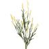 Yellow Cattail Spray