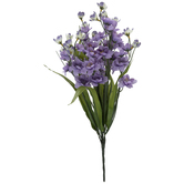 Lilac Blossom Bush