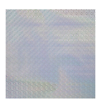 Silver Holographic Photo Prop Backdrop Roll