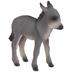 Gray Donkey Foal