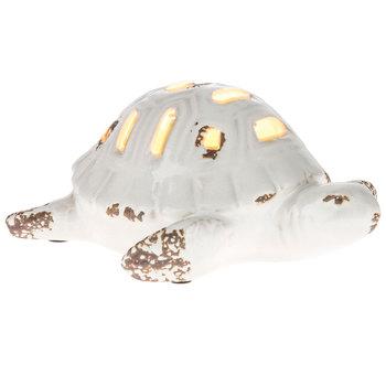 Cream Sea Turtle Lamp