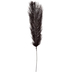 Black Dyed Ostrich Feather Pick