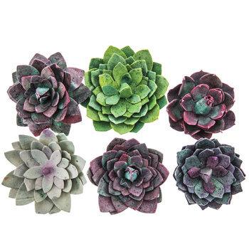 Paper Succulent Embellishments