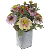 Dahlia Mix in Galvanized Metal Pot