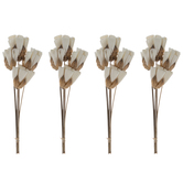 Mini Sola Flower Picks