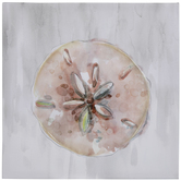 Blush Sand Dollar Canvas Wall Decor