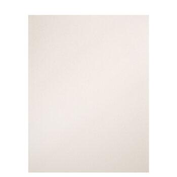 "Silver Ore Metallic Scrapbook Paper - 8 1/2"" x 11"""