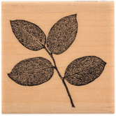 Salal Leaves Rubber Stamp