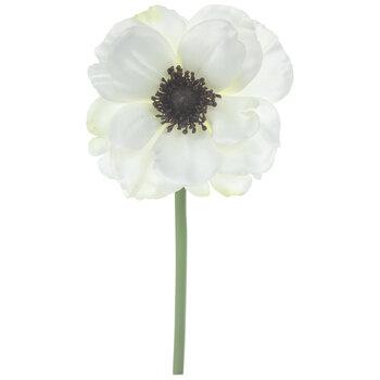 White Anemone Pick