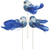 Blue Feather Birds