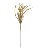 Shortbeard Feather Plumage Pick
