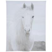 White Horse Canvas Wall Decor