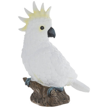 Cockatoo On Tree Stump