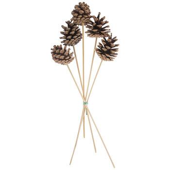 Austriaca Pinecones Bundle
