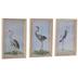 Miniature Great White Heron Framed Art