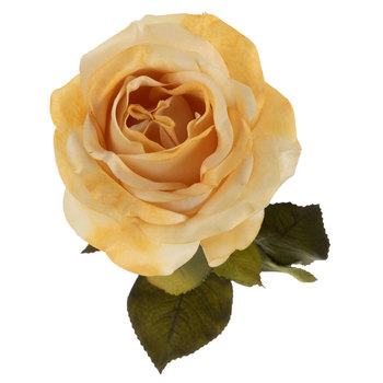 Full Rose Stem