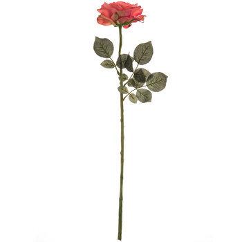 Georgia Rose Stem
