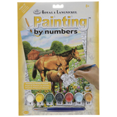 Horses In Field Paint By Number Kit