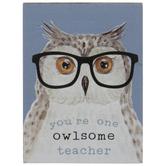 Owlsome Teacher Wood Decor