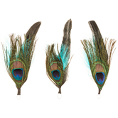 Peacock Natural Feather Picks With Loop - 5""