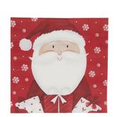 Santa & Snowflakes Napkins - Large