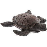 Brown Sea Turtle