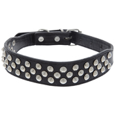 Black With Studs Pet Collar