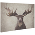 Moose Parchment Canvas Wall Decor