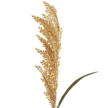 Wheat Grass Spray