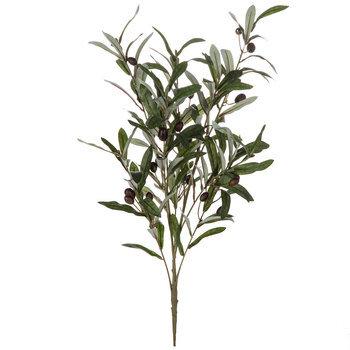 Olive Bush