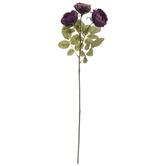 Mauve Diana Tea Rose Stem