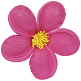 Bright Pink Plumeria Flower Adhesive Wall Decor