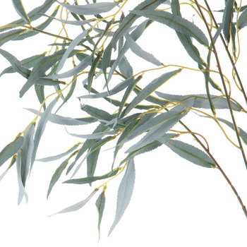 Weeping Willow Leaf Spray