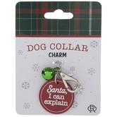 I Can Explain Dog Collar Charm