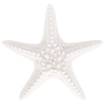 White Starfish Wall Decor