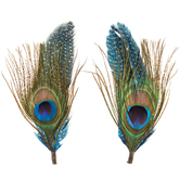 Natural Peacock & Guinea Feather Pick With Loop