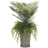 Palm & Maidenhair Fern In Metal Container