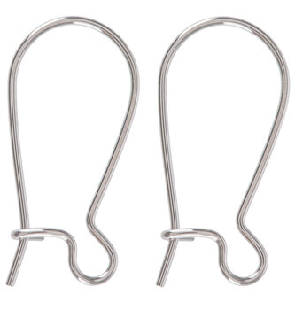 Stainless Steel Kidney Ear Wires - 17mm