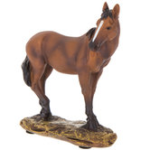Brown Standing Horse