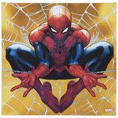 Spider-Man Action Canvas Wall Decor