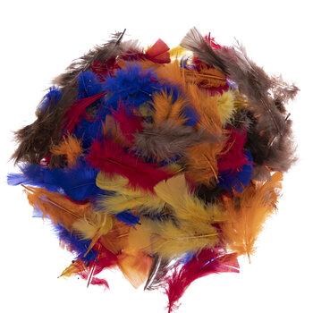 Multi-Color Feathers