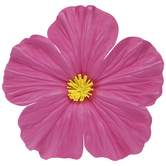 Bright Pink Hibiscus Flower Adhesive Wall Decor - Large
