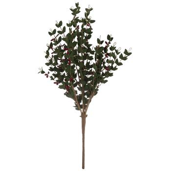 Berry Christmas Bush