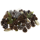 Frosted Pinecones & Pine Mix