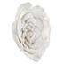 White Wild Rose Wall Decor - Medium