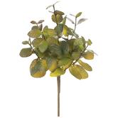 Mint Bush