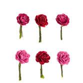Pink Micro Rose Embellishments