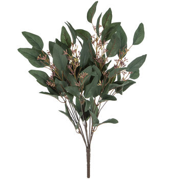 Eucalyptus Leaf Bush