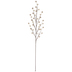 Champagne Tree Branch With Berries Pick
